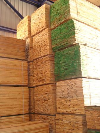 Tabla pino pais pino pais tablas maderas maderas - Maderas del pino ...